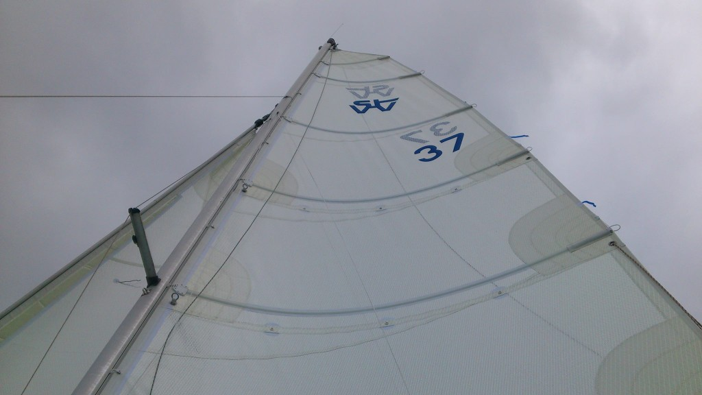 cat sail